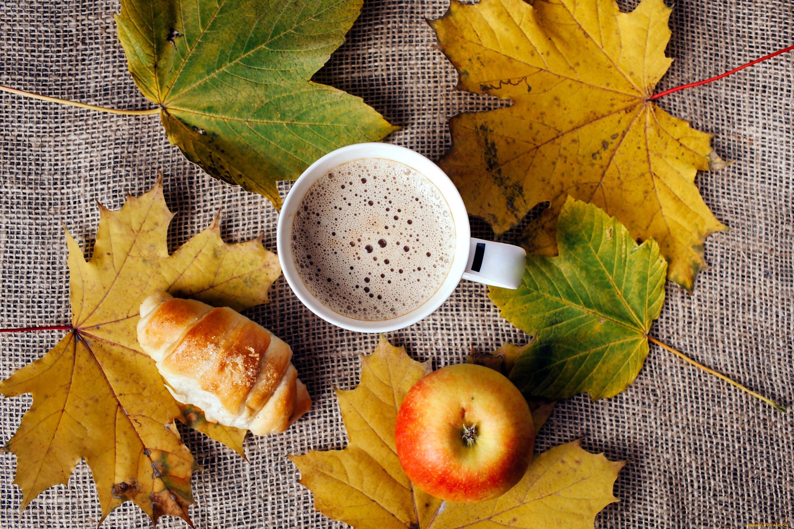 это картинки на телефон кофе осенние листья кто-то знает, как
